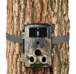 Trail Extreme cam basic